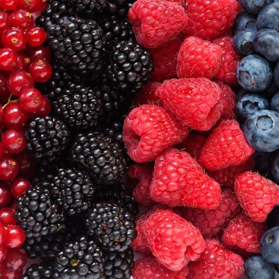 Miraculoasele fructe de padure